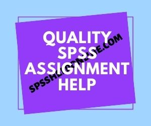 Quality SPSS Assignment Help